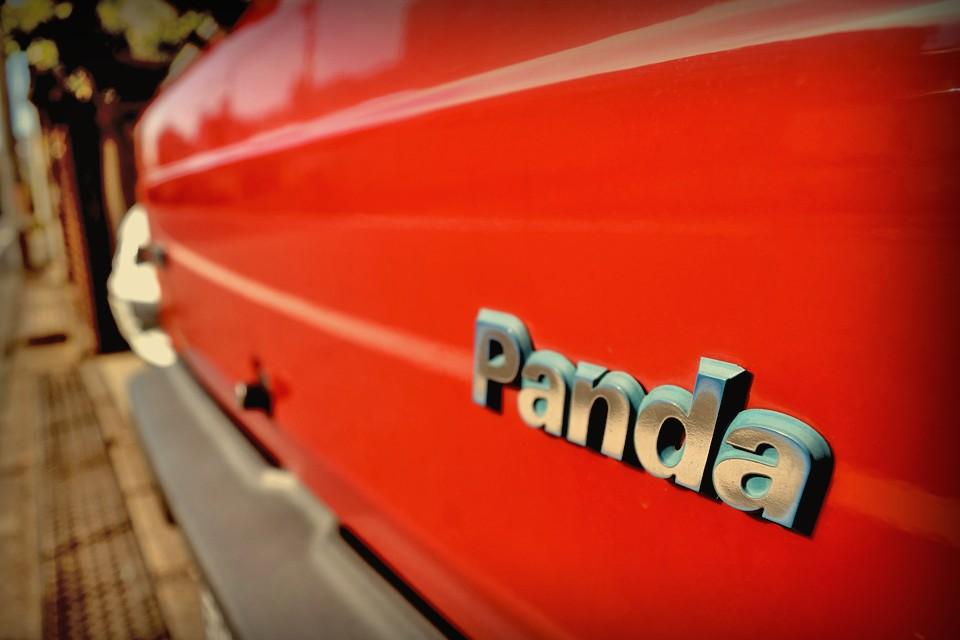 これはもはや、その再来?!パンダ39と呼んでも良いのではないかと・・・。