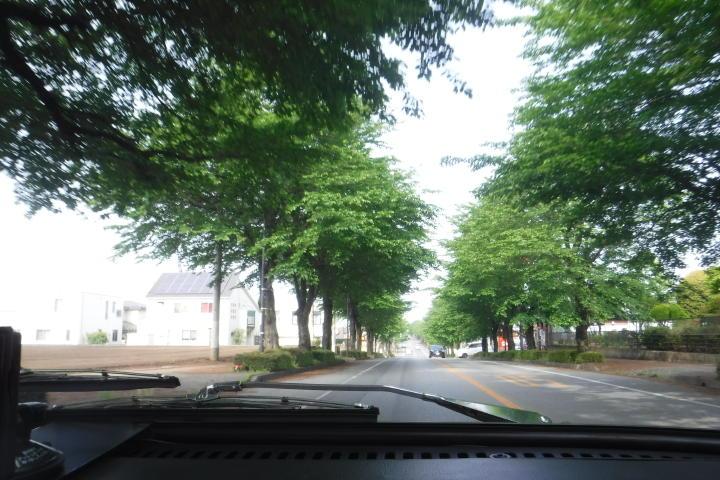 いい道路だねぇ~!道幅広いし・・・。